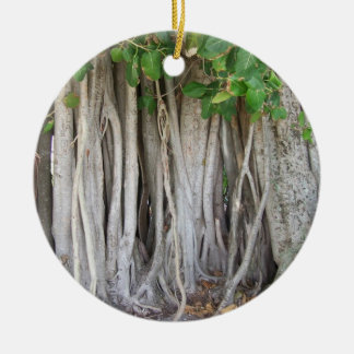 Old ancient ficus tree roots background picture christmas ornament