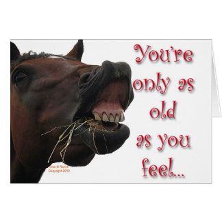 Old as You feel funny horse Greeting Cards