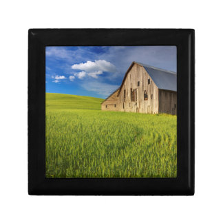 Old Barn in Field of Spring Wheat Gift Box