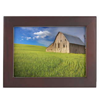 Old Barn in Field of Spring Wheat Keepsake Box
