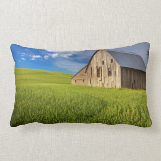 Old Barn in Field of Spring Wheat Lumbar Pillow