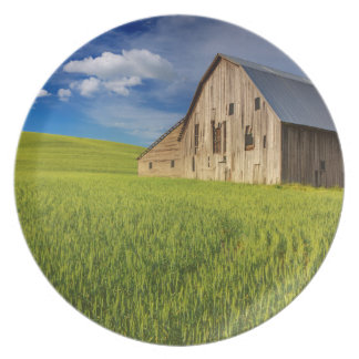 Old Barn in Field of Spring Wheat Party Plate