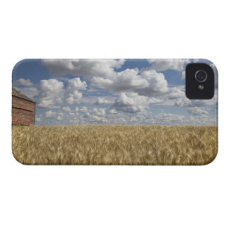 Old Barn in Wheat Field 2 iPhone 4 Case-Mate Case