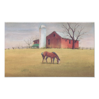 OLD BARN, SILO & HORSE by SHARON SHARPE Poster