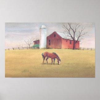 OLD BARN SILO HORSE by SHARON SHARPE Print