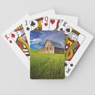 Old Barn Surrounded by Spring Wheat Field 1 Playing Cards