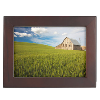 Old Barn Surrounded by Spring Wheat Field 2 Keepsake Box