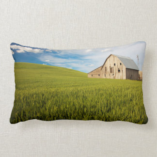 Old Barn Surrounded by Spring Wheat Field 2 Lumbar Pillow