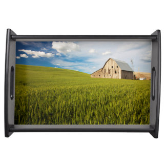 Old Barn Surrounded by Spring Wheat Field 2 Serving Tray