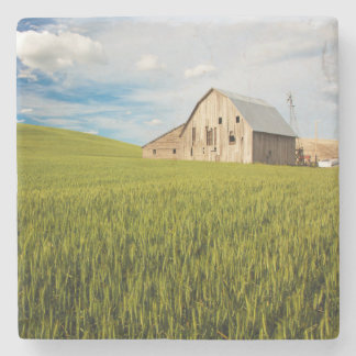 Old Barn Surrounded by Spring Wheat Field 2 Stone Coaster