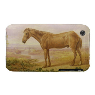 Old Billy a Draught Horse Aged 62 oil on panel iPhone 3 Covers