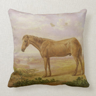Old Billy, a Draught Horse, Aged 62 (oil on panel) Cushion