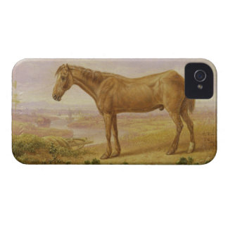 Old Billy, a Draught Horse, Aged 62 (oil on panel) iPhone 4 Cover