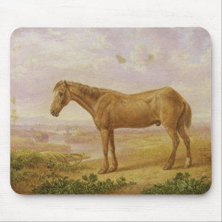 Old Billy, a Draught Horse, Aged 62 (oil on panel) Mouse Mat