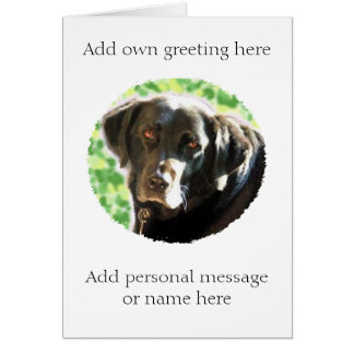 Old black Labrador photo card- add name message
