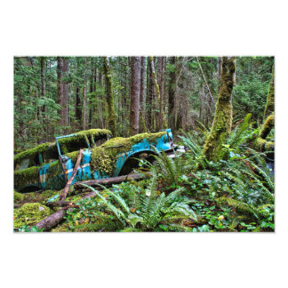 Old Car in the Forest Photo