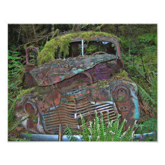Old Car Wreck in the Forest Photo