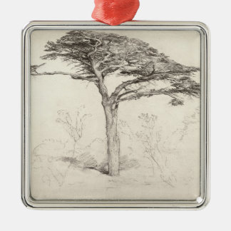 Old Cedar Tree in Botanic Garden, Chelsea, 1854 (p Christmas Ornament