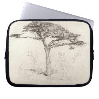 Old Cedar Tree in Botanic Garden, Chelsea, 1854 (p Laptop Sleeve