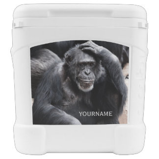 Old Chimpanzee custom cooler
