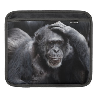 Old Chimpanzee iPad sleeve