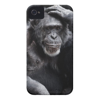 Old Chimpanzee iPhone case