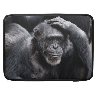 Old Chimpanzee MacBook sleeves