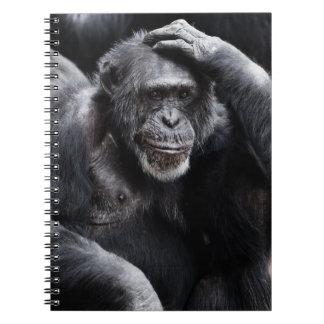 Old Chimpanzee notebook