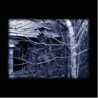 Old cottage Blue and white on Black Photo Sculpture