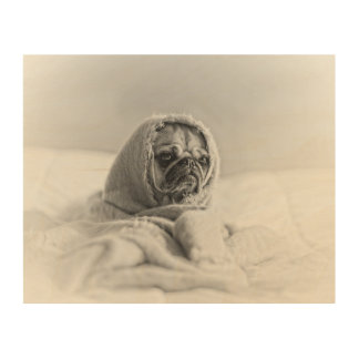 Old Country Pug Wood Print