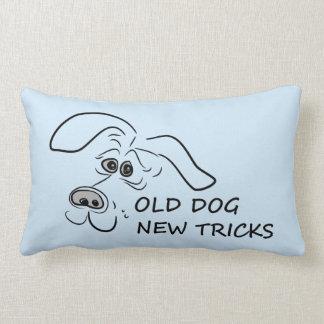 Old dog new tricks. lumbar cushion