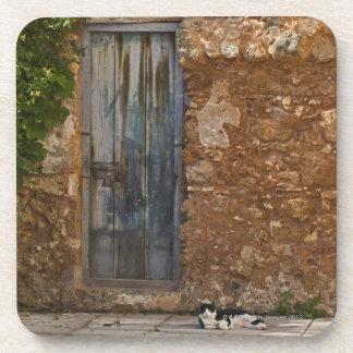Old door and resting cat coaster