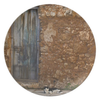 Old door and resting cat plate