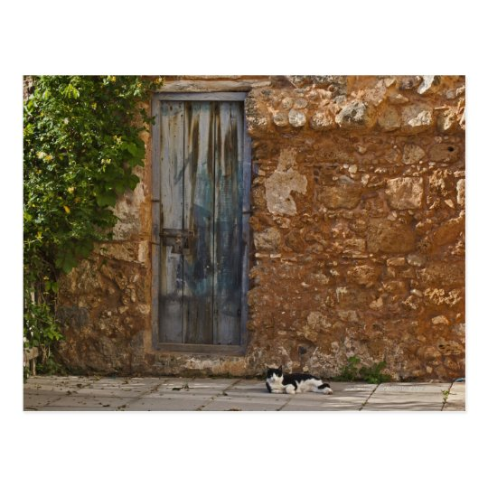 Old door and resting cat postcard