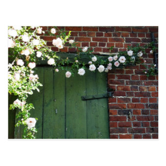 Old door and roses postcard