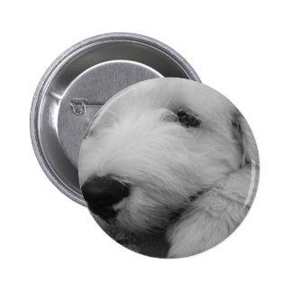 Old English Sheepdog 6 Cm Round Badge