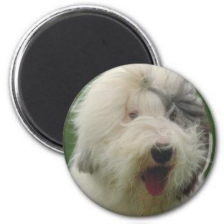 Old English Sheepdog 6 Cm Round Magnet