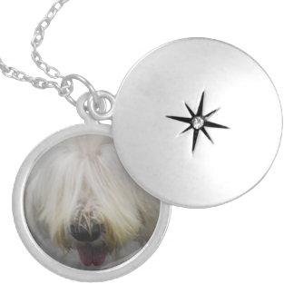 old-english-sheepdog-6.jpg round locket necklace