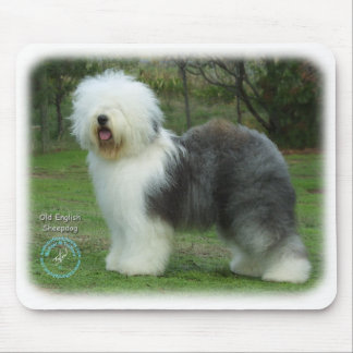 Old English Sheepdog 9F054D-17 Mouse Mat
