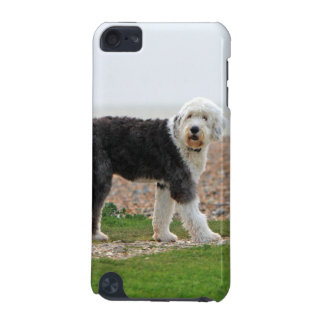 Old English Sheepdog dog ipod touch 4G case, gift iPod Touch (5th Generation) Case