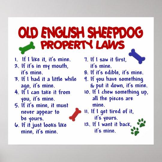 OLD ENGLISH SHEEPDOG PL2 POSTER