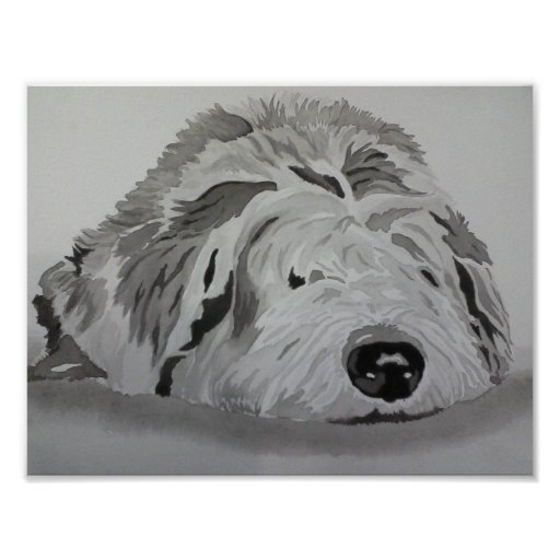 "Old English Sheepdog ""RAGS"" Poster"