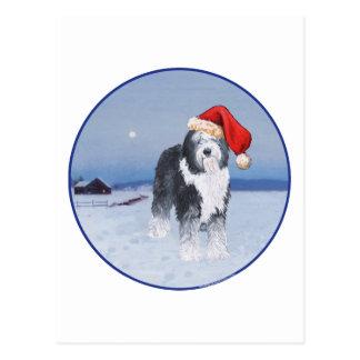 Old English Sheepdog Santa Hat Postcards