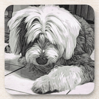 "Old English Sheepdog ""What's That? Coaster"