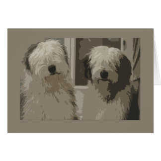 Old English Sheepdogs Greeting Card