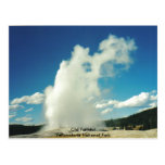 Old Faithful @ Yellowstone National Park Post Card