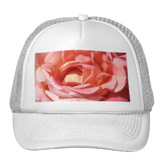 Old Fashioned Climbing Rose Mesh Hats