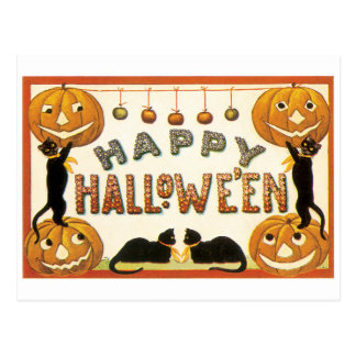 Old-fashioned Halloween, Black cats Postcard