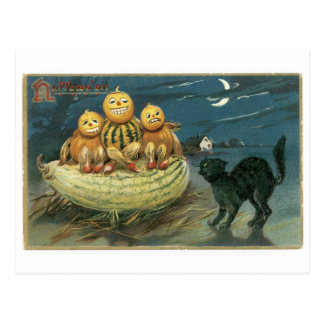 Old-fashioned Halloween, Pumpkins & Black cat Postcard