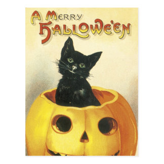 Old Fashioned Merry Halloween Cat Postcard